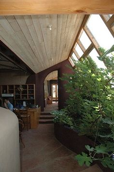 Earthship aka Rammed Earth Tire Dwelling interior planters using Grey Water system for Sustainability- good info here and a book list
