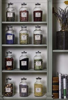 Creating Your Home Herbal Apothecary in 2019 | Herbs and