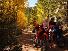 With Cree and more than lumens you should just about be able to start forest fires on high beam. Ktm 690 Enduro, Adventure, Adventure Movies, Adventure Books