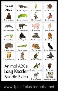Animal ABCs Easy Reader Bundle Bonus Extra