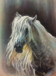 Pura Raza Espanola Stallion - soft pastels on velour paper, 30x40 cm, based on the photo made by Marta Nowakowska