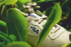 """FILA has a rich history of over 100 years, and is celebrating with a unique collaboration with the streetwear brand Akomplice.  Co-founder Patrick Liberty hails from the Yucatán, and draws creative inspiration from its deeply rich ecosystem.  Bold greens and purples evoke feelings of jungle foliage, fruit, ocean coral and the Caribbean Sea.  Fittingly, Akomplice x FILA Original Fitness """"Yucatan"""" drops on Cinco de Mayo."""