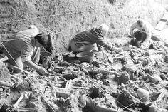 El equipo de Luis Fondebrider trabaja en la recuperación de huesos de desaparecidos en la dictadura argentina.