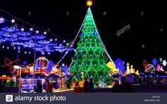 stock photo houston christmas tree at the magic winter lights show in houston 2015 shows a illumination of christmas tree at the - Christmas In Houston 2015