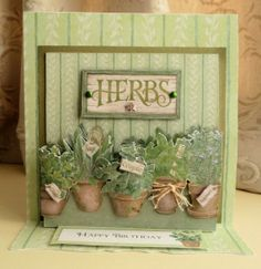 Pop-Up Card by Sheila Weaver - Joanna Sheen