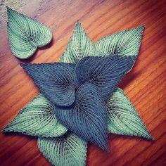 Petit atelier quilling création feuilles terminé  #art#artiste#quilling#scrapbooking#papier#decoration#feuille#nature#vacances#faitmain#handmade#madeinfrance#creation#plouay#lorient#morbihan#bretagne#breizh#bzh#france#lestoilesdelili#quillingart#quillingleaves#handcraft#paperart#paperartist#artwork#paperleaves
