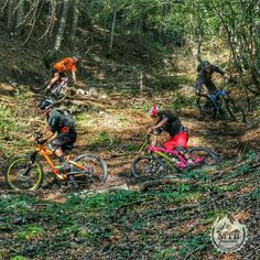 "www.bikerental.si  Trails around Kranjska Gora region... Perfect. Contact us for all the info, guiding, shuttle or bike hire.  // ""Trejli"" po okolici Kranjske Gore... SanjskI. Kontaktirajte nas za informacije o vodenju, najem koles ali prevozu.   #kranjskagora #kranjska #mtbride #mtb_republic #mtbcool #mtb #mtbporn #mtbview #mtbtrails #mtbrent #mtb_is_awesome #mtb_is_amazing #biker #mtbcamp #mtbschool #mtbtourism #mtbclient #mtbshop #pinkbike #riderschannel #clicknabike #dh_mtbteam"