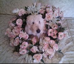 Don't let this photo fool you there is an 85 lb Goldendoodle under this wreath. LOL.