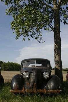I love old trucks & cars....love this photo.
