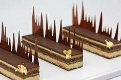 Leikatut suklaaleivokset / chocolate mousse cakes by Frank Haasnoot Small Desserts, Fancy Desserts, Gourmet Desserts, Plated Desserts, Gourmet Recipes, Dessert Recipes, Pastry Design, Pastry Art, Beautiful Desserts
