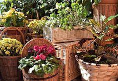 Los adornos florales en una boda adquieren especial realce si van dentro de cestas de calidad. Los detalles se notan y la diferencia merece la pena.