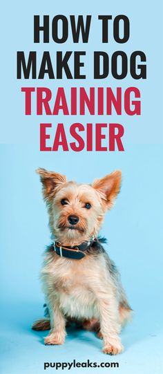 How to Make Dog Training Easier. From being consistent with rules to understanding your dog's limits, here's 10 tips that make dog training easier. #dogs #dogtraining #dog #dogtips #doglovers #puppytraining via @puppyleaks