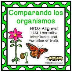 Comparando los organismos ~ Comparing Organisms (Spanish): NGSS Aligned 1-LS3-1 Heredity: Inheritance and Variation of Traits, A packet looking at the life cycle of organisms and comparing and contrasting organisms in the early stages of life as well as the adults