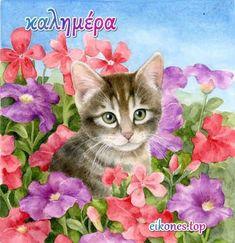 Καλημέρα με αγάπη και όμορφες εικόνες! - eikones top Morning Cat, Cats, Painting, Happy, World, Be Nice, Quotes Love, Pretty Quotes, Good Morning Gif