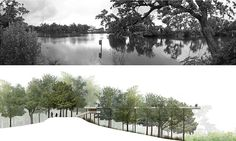 Couturie Forest + Island Master Plan - Colectivo