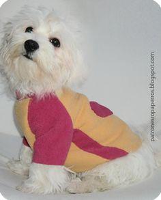 Patrones de ropa para perros: Patrón de suéter para perro con manga ranglán