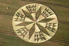 July Crop Circles From the UK (Photos)