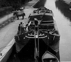 La canalisation des rivières et l'ouverture de nouveaux canaux va lamener la mignole à adapter sa forme aux nouvelles conditions de navigation. Ses flancs se verticalisent, sa longueur augmente, elle troque son grément contre un mât de canal. Son volume général, et par là sa capacité de charge, augmentent. Mignole de canal, à Reims, au milieu du XXe siècle.  Mignole:  Bassin d'origine : Meuse