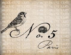 Antique Paris France No. 5 Bird Nest Spring Illustration Digital Download for Tea Towels, Papercrafts, Transfer, Pillows, etc Burlap No 6287. $1.00, via Etsy.