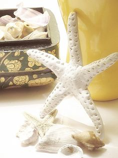 DIY starfish with air drying clay