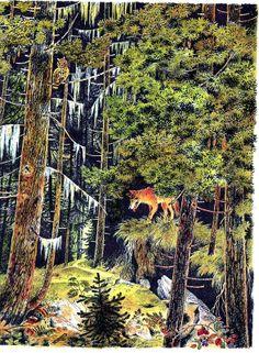 Gerda Muller Le loup qui attend ....