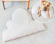 Its the sewing in a zip instructions I'm pinning for. Ten Steps to DIY a Cloud Bed (For Your Pooch)