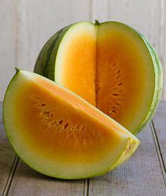 "Watermelon....""Orange Crisp"" hybrid...the flesh is sweet and seedless...."