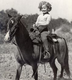 Shirley Temple riding a pony Pretty Horses, Beautiful Horses, Classic Hollywood, Old Hollywood, Hollywood Icons, Hollywood Glamour, Old Photos, Vintage Photos, Antique Pictures