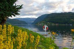 IMG 85761 Photo Essay: Fjord Fun in Norway – Norway in a Nutshell