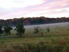 Foggy Morning Breakdown