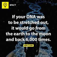 Contour length of human DNA. In my opinion it would stretch to Moon and back 375,000 times. Contour length of DNA in 1 cell ~ 1.5 metres. No. of cells in human body = 10^14. Distance from Earth to Moon varies about 400, 000 km.