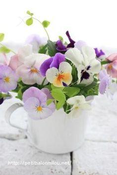 真っ白なマグカップには小さな花をたくさん入れると、爽やかでナチュラルなイメージに。ベランダの鉢植えからビオラをカットして、さっと生けられる手軽さがいいですね。