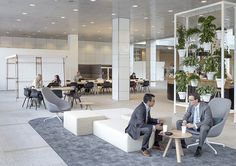 Hollandse Nieuwe - Haagse Poort Corporate Interiors, Office Interiors, Office Interior Design, Luxury Interior, Clean Grill Grates, Car Cleaning Hacks, Deep Cleaning, Roomspiration