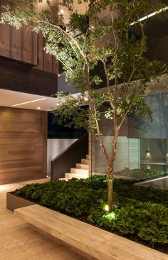 Rosamaria G Frangini | Architecture Houses | Tree uplighting & contrast in forms and textures: Gantous Arquitectos