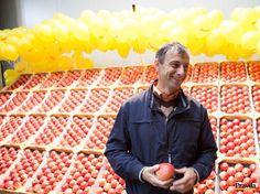 Jozef Vozár, ovocinárstvo, jablká, poľnohospodár