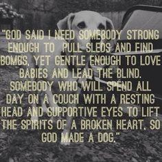 God made Dogs Reason