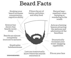 the beard thesis