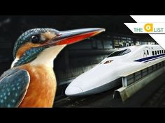 4 Incredible Technologies Inspired by Animals - YouTube