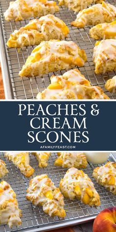 Make these tender and delicious Peaches & Cream Scones with sweet and juicy in-season peaches and fresh dairy cream! Peach Scones, Cream Scones, Peach Bread, Peach Muffins, Orange Scones, Brunch Recipes, Breakfast Recipes, Dessert Recipes, Breakfast Scones