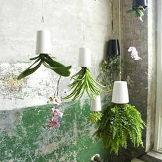upside down hanging planter