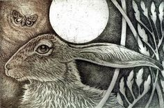 """""""Hare"""" by Louise Scott (copper plate etching) Jack Rabbit, Rabbit Art, Wild Rabbit, Art And Illustration, Year Of The Rabbit, Into The Fire, Bunny Art, Art Graphique, Green Man"""