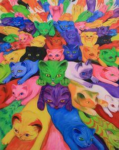 acids kitties :3