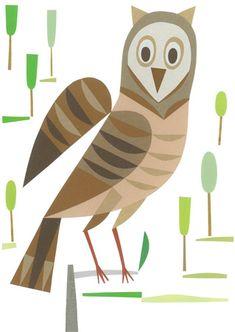 owl from Urubbu