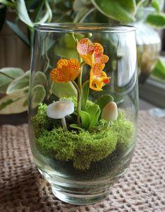 Miniature Orange Vanda Orchid Terrarium in par MissMossGifts
