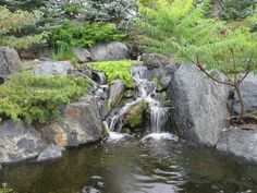 A beautiful waterfall by The Bruce Company. Pond Water Features, Garden Waterfall, Pond Ideas, Les Cascades, Beautiful Waterfalls, Wishing Well, Fire Pits, Ponds, Planting Flowers
