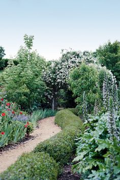 semi formal small gardens australia Google Search Garden