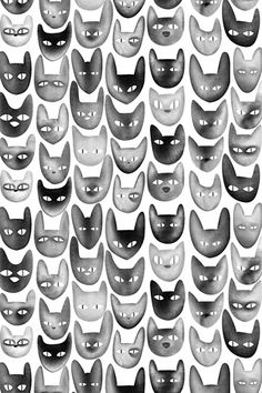 Poolga - Cats - Rene Agudelo