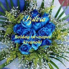 Name Day, Hanukkah, Happy Birthday, Wreaths, Decorations, Happy Brithday, Door Wreaths, Saint Name Day, Urari La Multi Ani