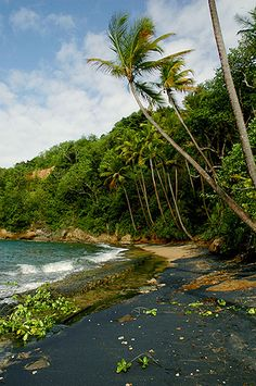 Black Volcanic Sand Beach in Dominica