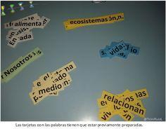 El juego de las palabras, aprendizaje cooperativo